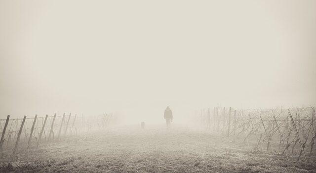 Ansia, depressione, attacchi di panico - Alessandro Vimercati